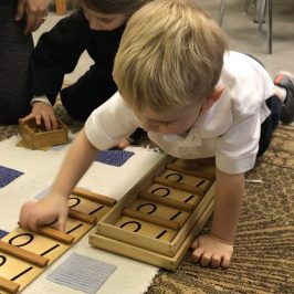 Casa Math: Understanding, Not Just Recognizing or Repeating Numbers